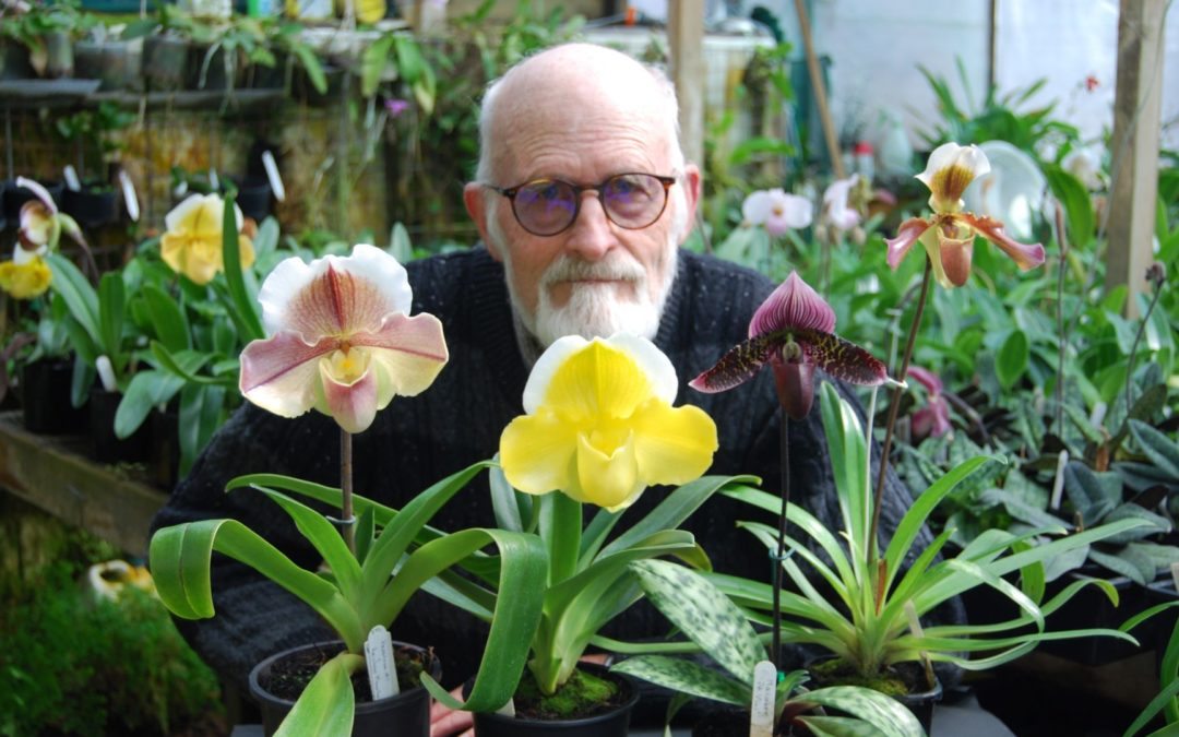 Awards for Exceptional Orchids